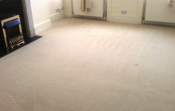 Standard Carpet Cleaning
