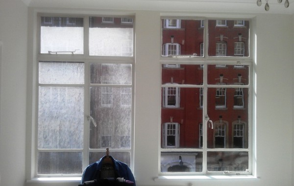 Standard Window Cleaning near Holland Park