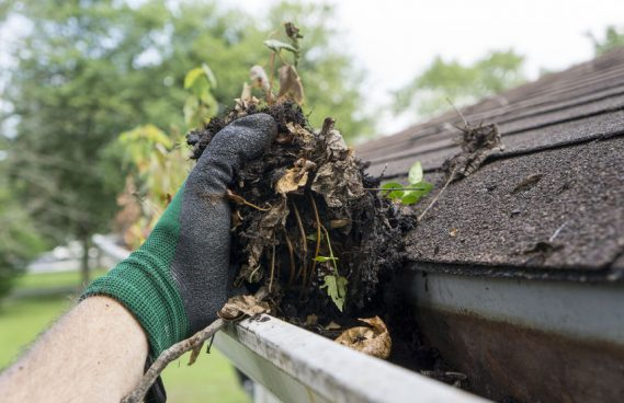 How often must clean gutters?
